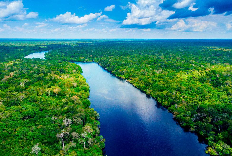 Dia da Amazônia: Reflexões sobre este grande tesouro natural da humanidade